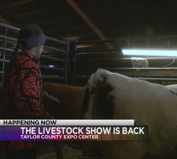 Livestock_show_0_20180117233651