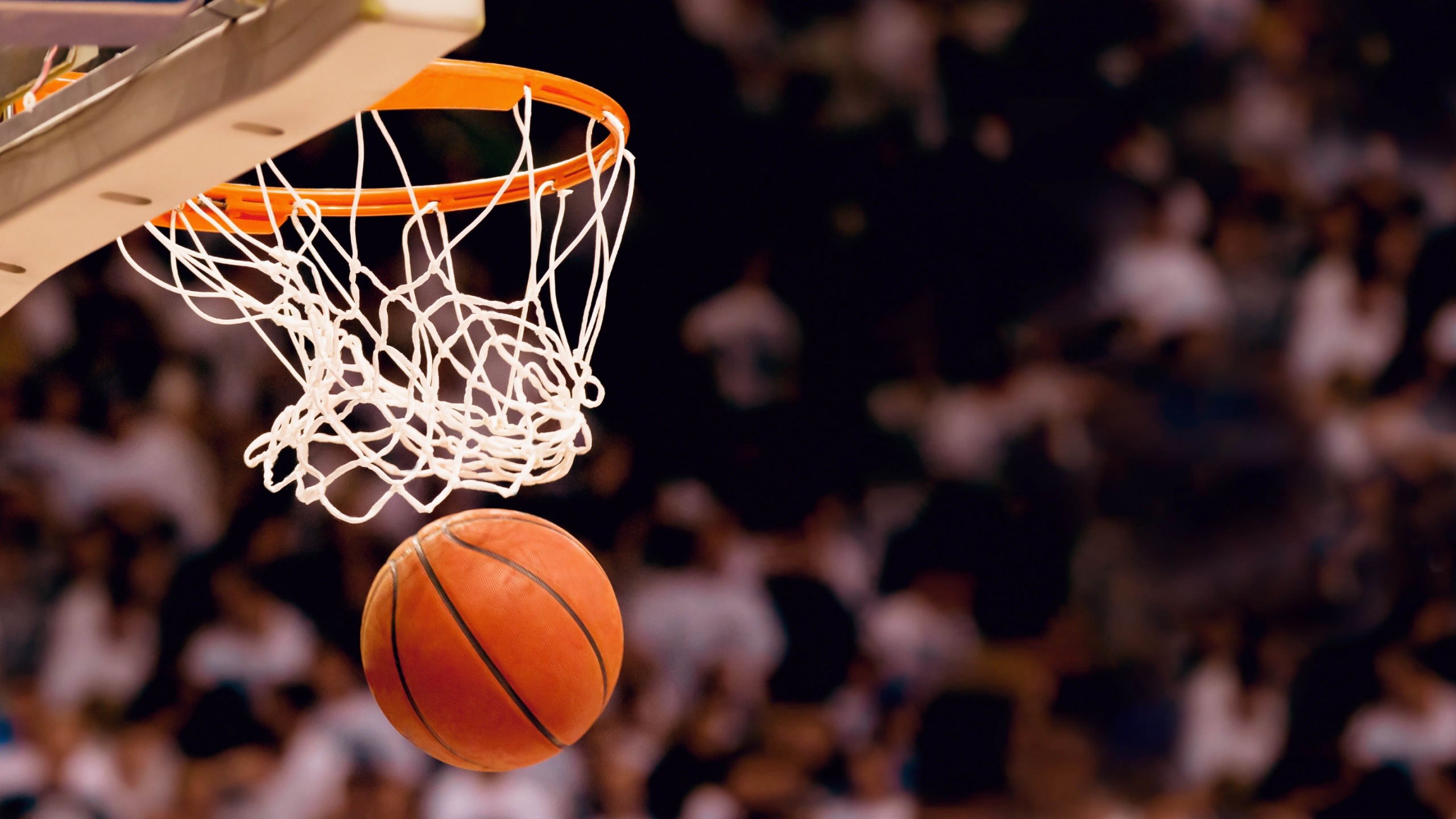 basketball_1518388106467.jpg