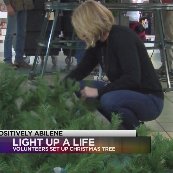 Hendrick Hospice volunteers set up tree for Light Up a Life campaign